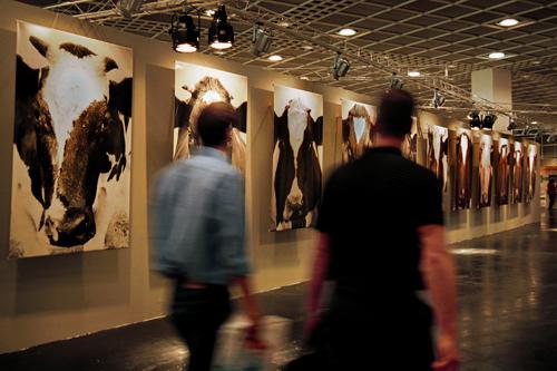 messe frankfurt rolf pauw iffa sonderschau gallery kühe